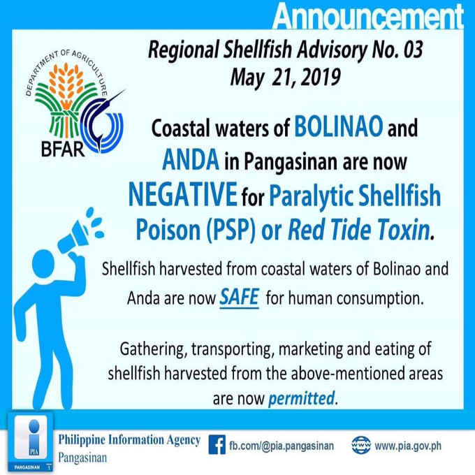 philippine shellfish in bolinao and anda now safe to eat