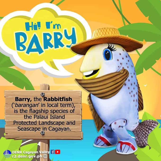 barry, the rabbit fish