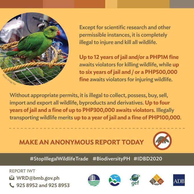 penalty for killing wildlife in the philippines