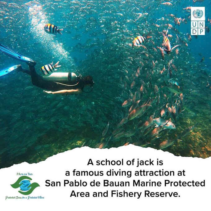 san pablo de bauan marine protected area