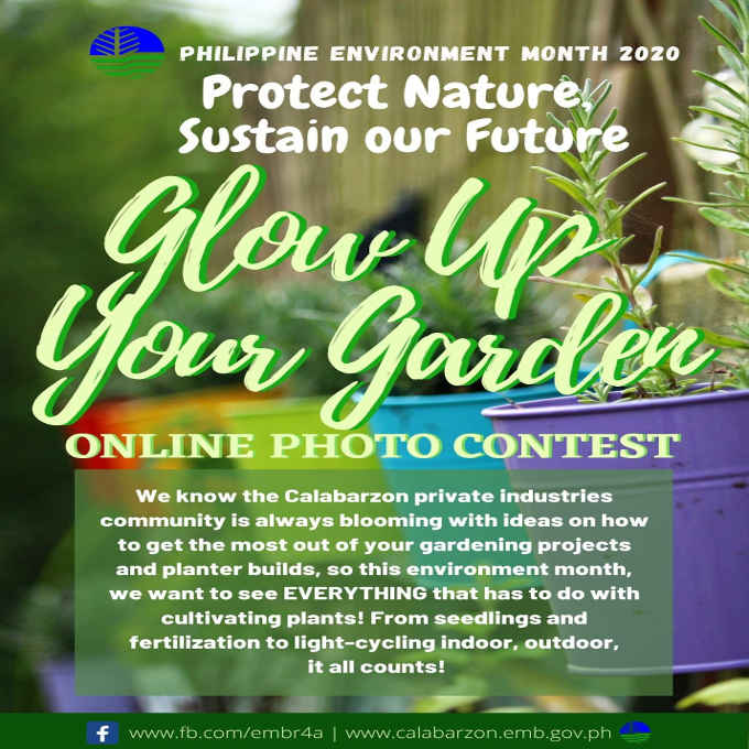 glow up your garden