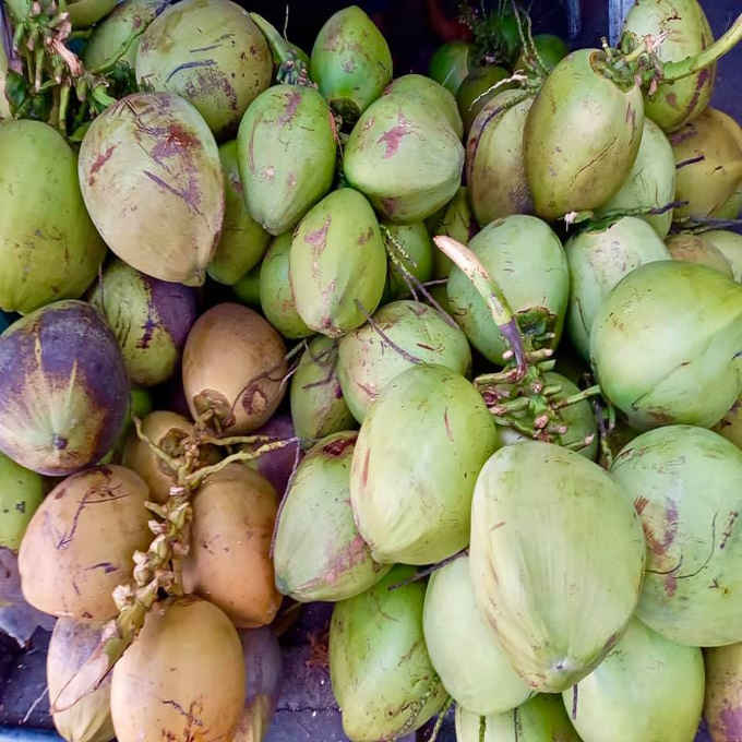 national coconut week