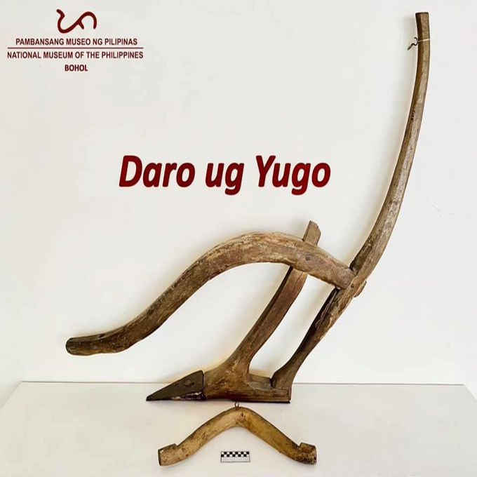 daro and yugo