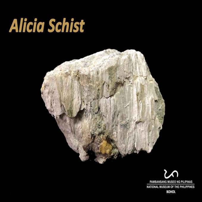 alicia schist