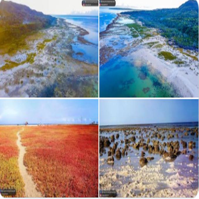 loon coastal geomorphic conservation park